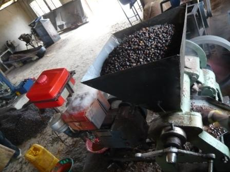 Palm Nut Crushing Machine